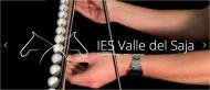 Página Web del Departamento de Física y Química del IES Valle del Saja